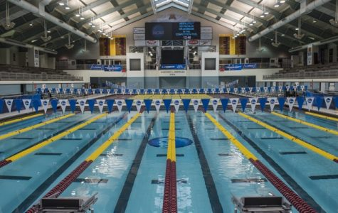 Swimming: What You Want To Know!