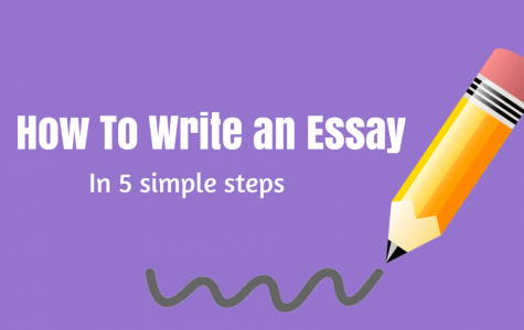 How to Write an Essay In 5 Simple Steps!