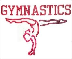 Gymnastics: Top 3 Gymnasts of all Time