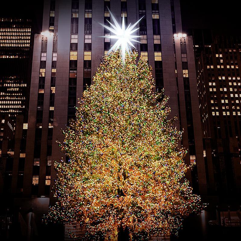 The+big+tree+in+Rockefeller+Center+