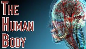 5 Wonders Of The Human Body, Solved(Finally)