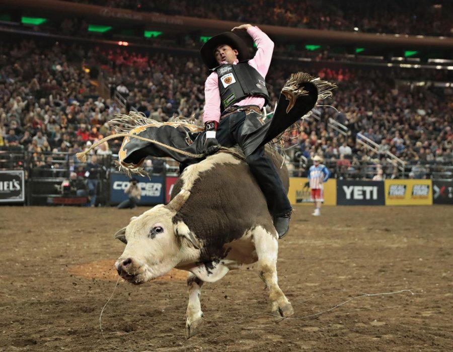 Bull riding!!