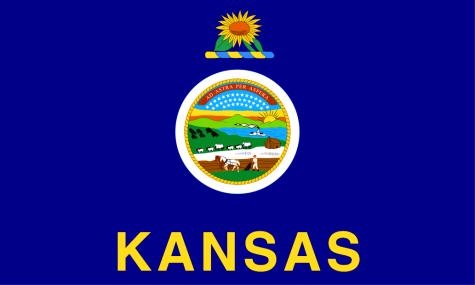 The Kansas Flag