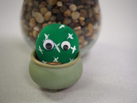 You can paint your rock to look like a plant!